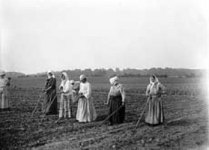 Women's Work:The Untold Story of America's Female Farmers