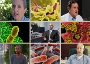 Beating Superbugs: Can We Win?